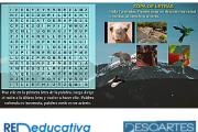 Sopa de letras (15x15) con imágenes