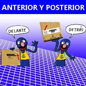ANTERIOR Y POSTERIOR